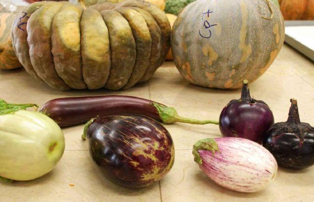Los agricultores recibiran un curso gratuito de diferenciacion y calidad del producto agricola - 1, Foto 1