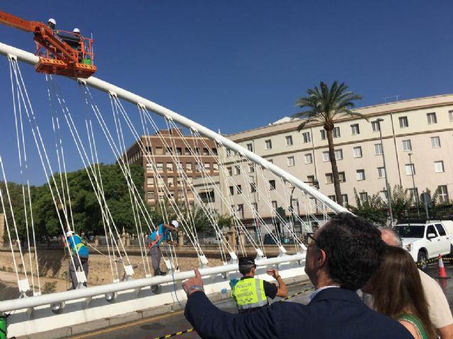 Limpieza de altura en los puentes del Segura - 2, Foto 2