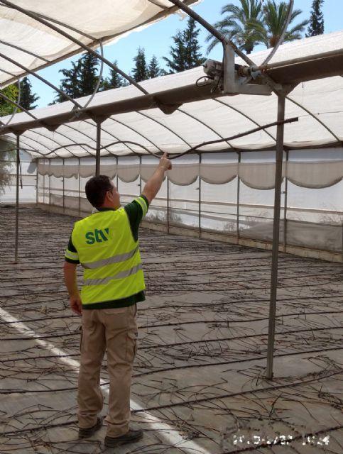Un nuevo sistema smart se encarga del control climático de los viveros municipales - 1, Foto 1