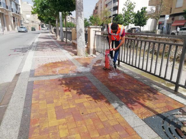 Protección Civil acomete trabajos de revisión técnica en más de 150 hidrantes distribuidos por el casco urbano y el polígono industrial - 4, Foto 4