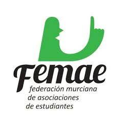 Femae denuncia que el Observatorio para la Convivencia Escolar deja de lado a estudiantes, padres y profesores - 2, Foto 2