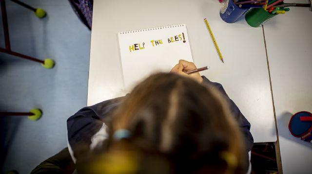 Los docentes Naturaliza de Murcia vuelven a las aulas en un curso escolar en el que la educación ambiental ganará más relevancia - 1, Foto 1