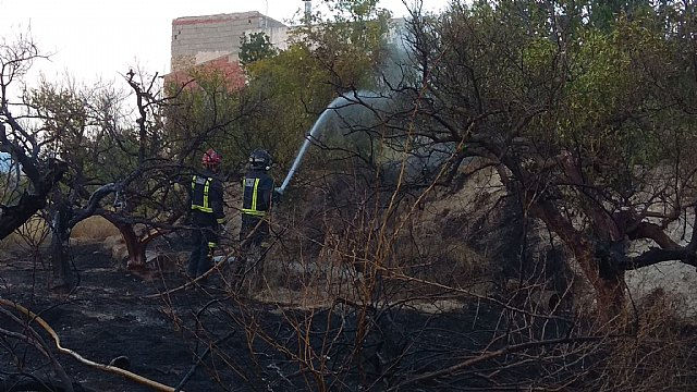 Bomberos CEIS sofocan un incendio en un huerto en la carretera Mula-Archena - 1, Foto 1