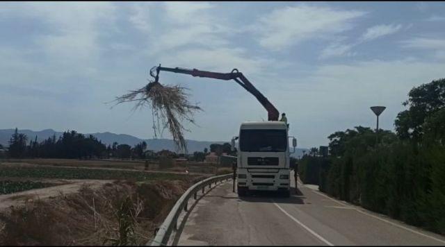 El Ayuntamiento de Lorca lleva a cabo la limpieza del tramo urbano de la rambla Ylorci situada en la pedanía de Tercia - 1, Foto 1