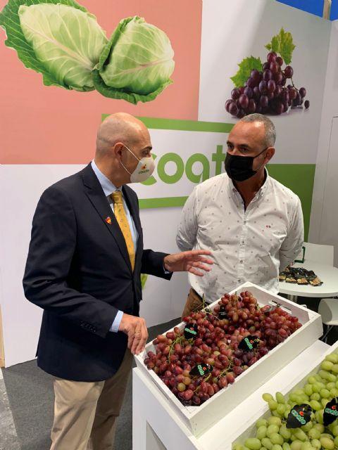 Participación muy satisfactoria de COATO en Fruit Attraction 2021, Foto 3