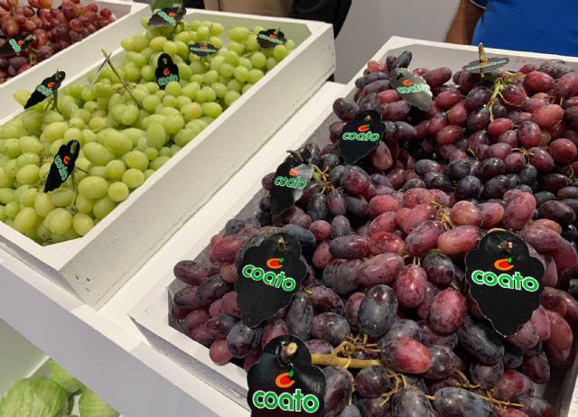 Participación muy satisfactoria de COATO en Fruit Attraction 2021, Foto 4