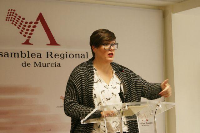 El PSOE denuncia que el Plan de Gobierno Abierto del Gobierno Regional demuestra el incumplimiento de la Ley de Transparencia, Foto 1