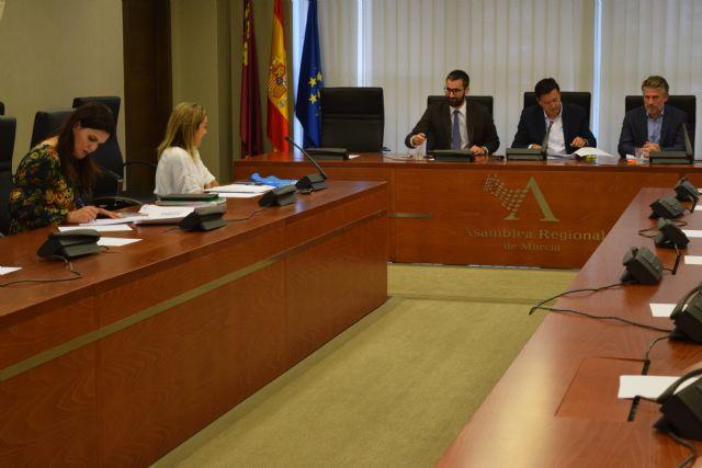 La Asamblea solicita, a instancias del PP, la elaboración de un plan de apoyo a la lectura, Foto 1