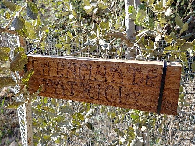 """The XV Climb to the Morrón de Espuña """"Memorial Patricia Romero"""" will take place on Sunday, January 26, Foto 2"""
