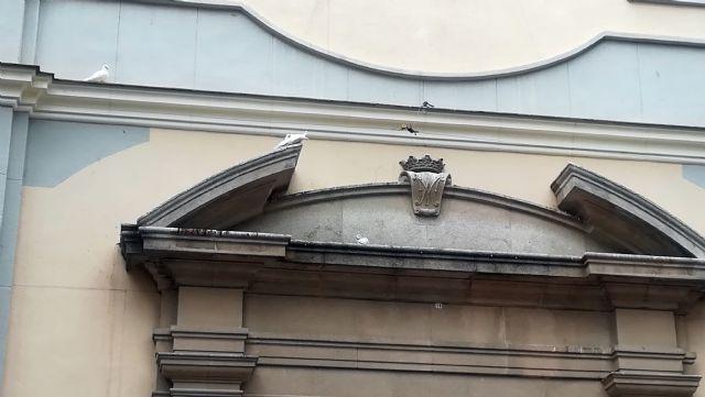 La asociación de vecinos de Vistabella reclama una solución al problema de las palomas - 3, Foto 3