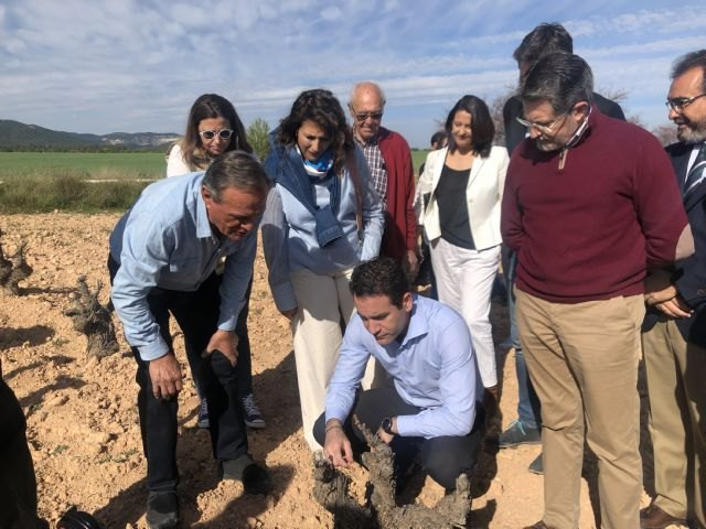 Teodoro García: Proponemos incentivos fiscales a los jóvenes emprendedores que se instalen en zonas rurales - 2, Foto 2