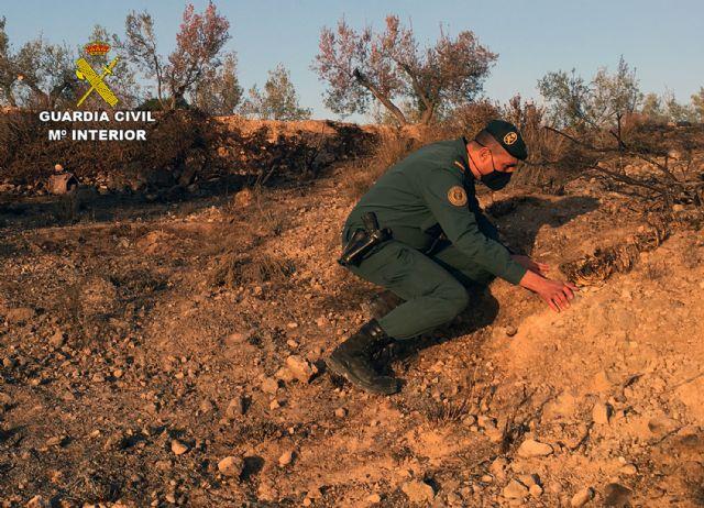 La Guardia Civil investiga a una persona  por originar un incendio forestal en Barinas-Abanilla - 1, Foto 1