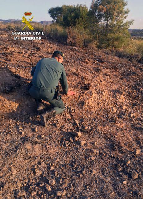 La Guardia Civil investiga a una persona  por originar un incendio forestal en Barinas-Abanilla - 2, Foto 2