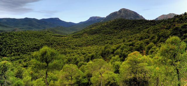 Win Totana defends the Protection and Conservation of our natural areas, such as Espuña