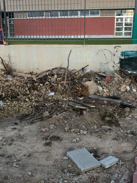 El PSOE de San Javier denuncia que hay plagas de ratas por todo el municipio y pide soluciones urgentes - 1, Foto 1