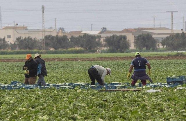 [Abiertas las ayudas a la inversión en explotaciones agrarias, cuyo plazo de presentación de solicitudes finaliza el próximo 20 de octubre