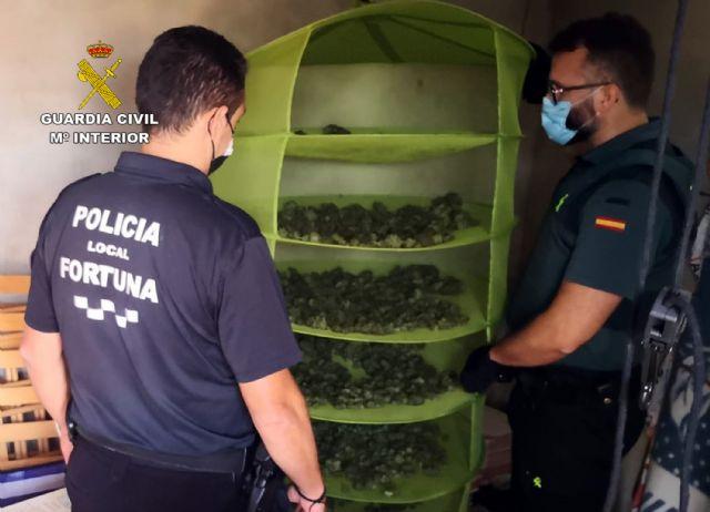 La Guardia Civil desmantela en Fortuna un grupo dedicado al cultivo ilícito de marihuana - 1, Foto 1