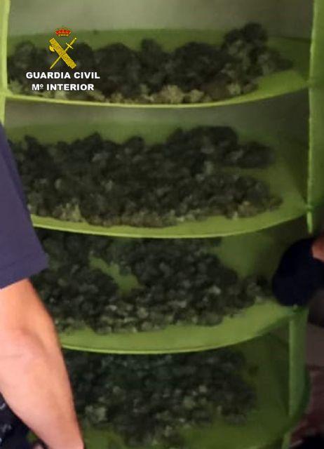 La Guardia Civil desmantela en Fortuna un grupo dedicado al cultivo ilícito de marihuana - 2, Foto 2