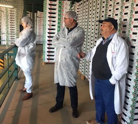 "Municipal authorities visit the fruit and vegetable marketing company ""Horfrusa, SL"""