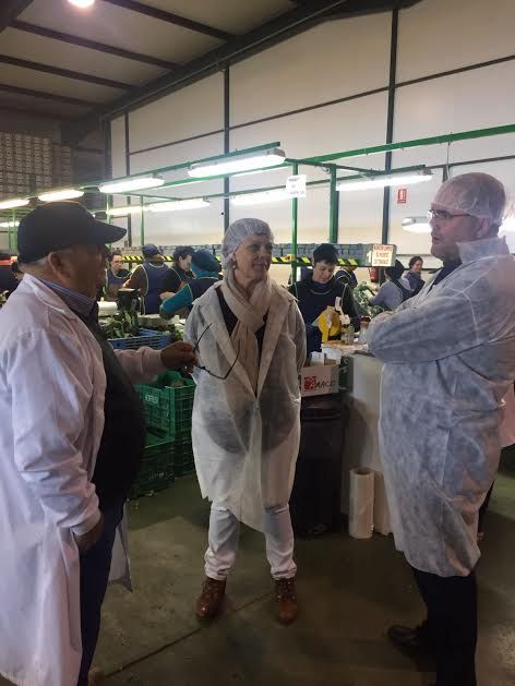 "Municipal authorities visit the fruit and vegetable marketing company ""Horfrusa, SL"", Foto 2"