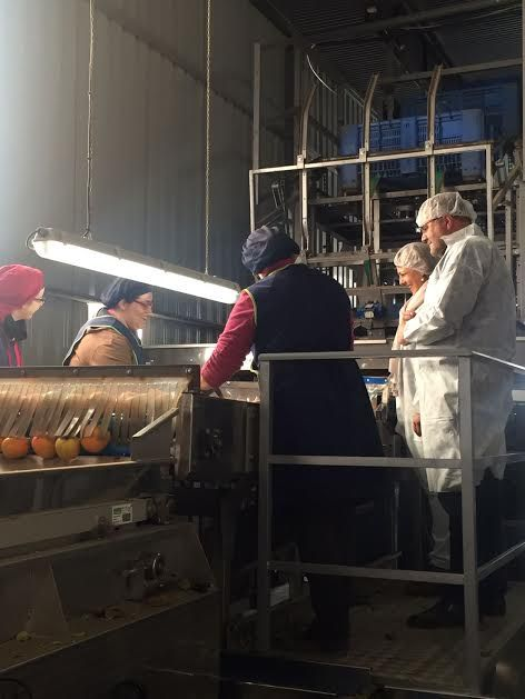 """Municipal authorities visit the fruit and vegetable marketing company """"Horfrusa, SL"""", Foto 3"""