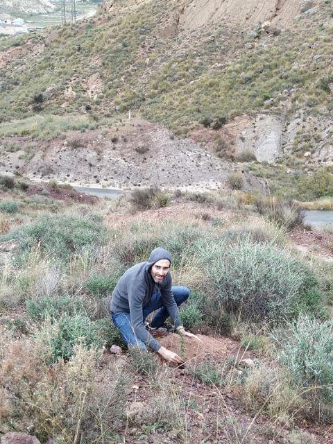 El PSOE propone que se realice una plantación de árboles en montes de Puerto Lumbreras - 1, Foto 1