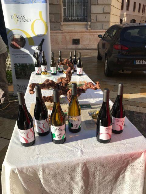 El vino Tomás Ferro de la UPCT apuesta por la uva Meseguera - 5, Foto 5