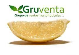 GRUVENTA prevé una segunda campaña de cítricos más positiva y optimista - 1, Foto 1