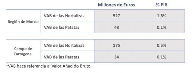 La aportación económica real de la agricultura intensiva del Campo de Cartagena supone un 0,6% del PIB - 2, Foto 2