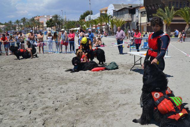 San Pedro se une a la celebración del Día del Perro - 2, Foto 2