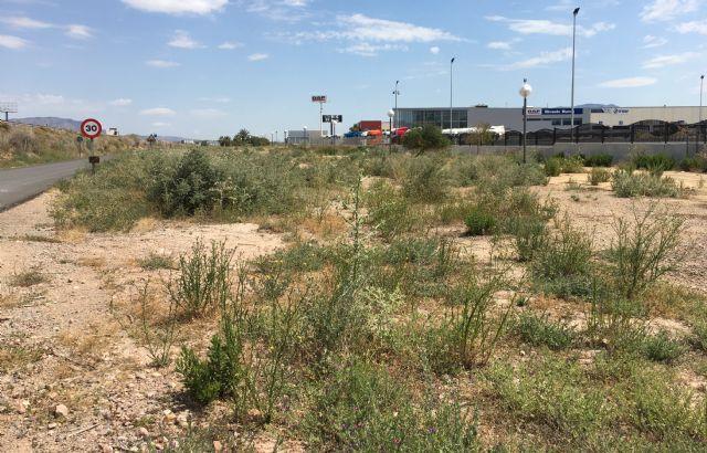 El Grupo Municipal Popular solicitará la limpieza y acondicionamiento de las zonas verdes del Polígono Industrial, así como la reposición o reparación de las farolas y señales de tráfico, Foto 1