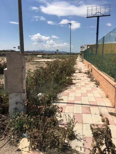 El Grupo Municipal Popular solicitará la limpieza y acondicionamiento de las zonas verdes del Polígono Industrial, así como la reposición o reparación de las farolas y señales de tráfico, Foto 2