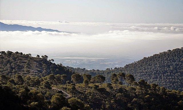 Una modélica restauración sitúa Sierra Espuña como ejemplo de ecoturismo, Foto 1