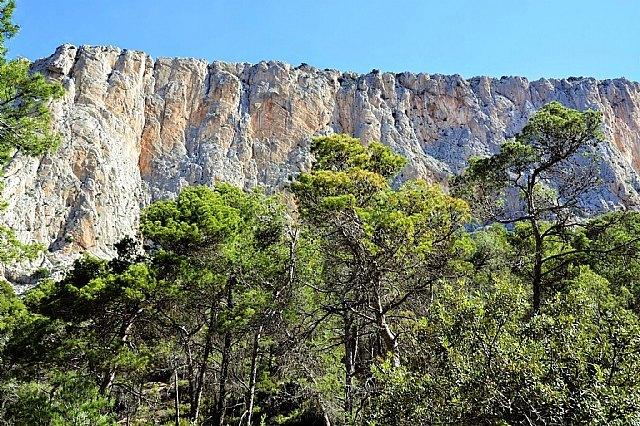 Una modélica restauración sitúa Sierra Espuña como ejemplo de ecoturismo, Foto 2