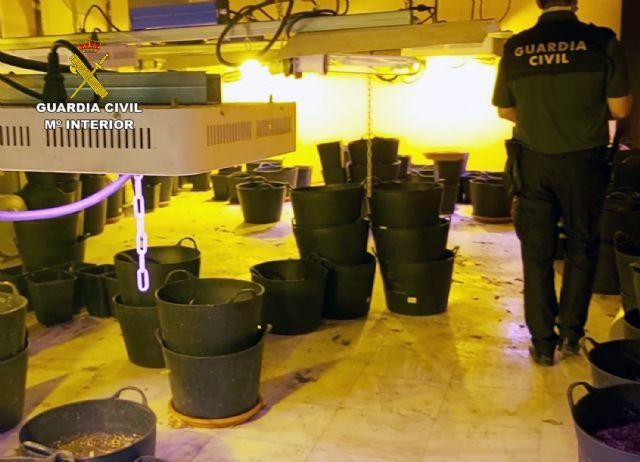La Guardia Civil desmantela un invernadero indoor de marihuana en un almacén de antigüedades de Totana - 2, Foto 2