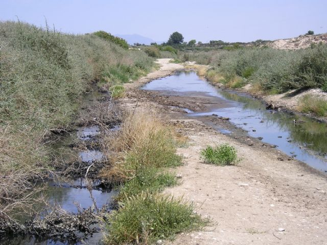 Se exigen medidas urgentes para prohibir el vertido temporal de aguas residuales urbanas o industriales en el río Guadalentín
