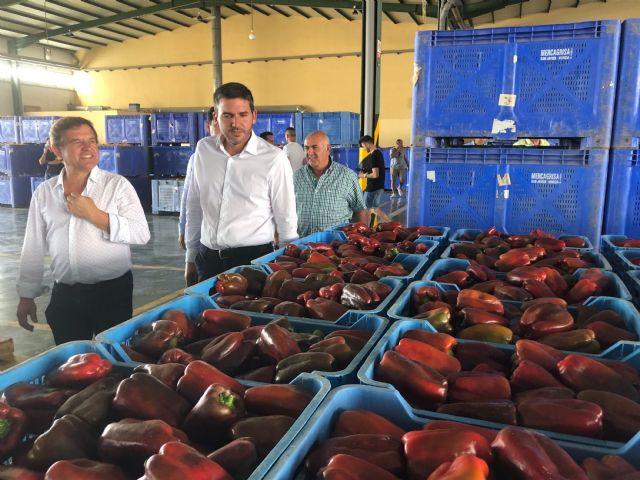 Antonio Luengo visita las instalaciones del mercado agrícola de San Javier - 1, Foto 1