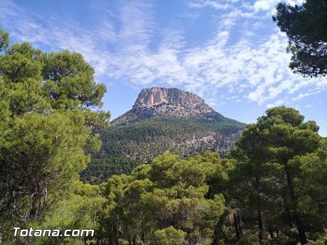 Los vecinos de Totana son los segundos que más visitan el parque regional de Sierra Espuña de toda la Región, según un estudio, Foto 1