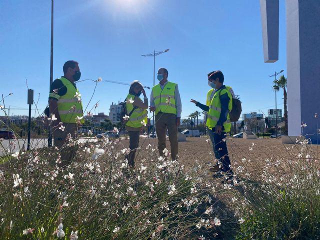El Ayuntamiento aumenta la biodiversidad urbana y mejora la calidad ambiental - 1, Foto 1