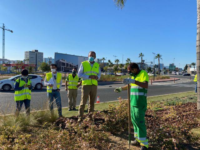 El Ayuntamiento aumenta la biodiversidad urbana y mejora la calidad ambiental - 2, Foto 2