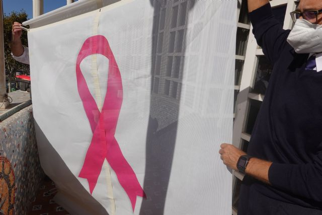 La Asamblea se tiñe de rosa en solidaridad con las personas con cáncer de mama - 1, Foto 1
