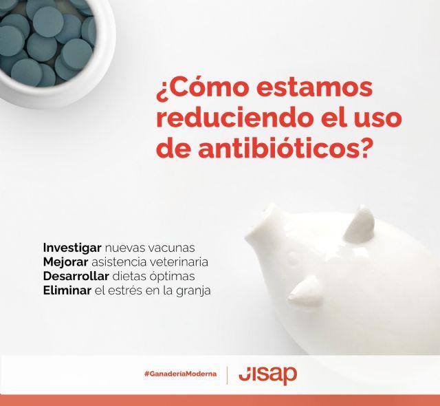 Uso prudente de los antibióticos en ganadería porcina - 1, Foto 1