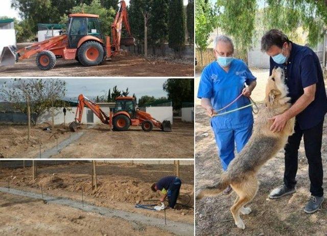 Saorín: En el centro de acogida de animales se están realizando mejoras por importe de 23.000 euros - 1, Foto 1