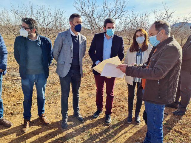 Los buenos resultados de los cultivos experimentales de trufa negra abren una nueva alternativa a la agricultura de Caravaca - 3, Foto 3