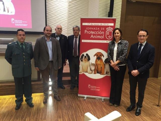 La Jornada de Protección Animal pone de manifiesto la importancia de sensibilizar y educar a la población para evitar el maltrato - 1, Foto 1