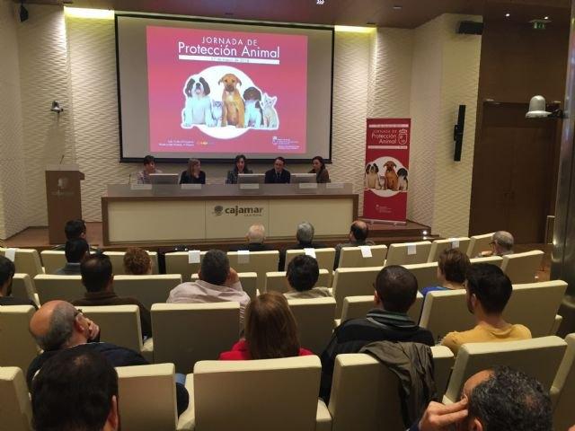 La Jornada de Protección Animal pone de manifiesto la importancia de sensibilizar y educar a la población para evitar el maltrato - 2, Foto 2