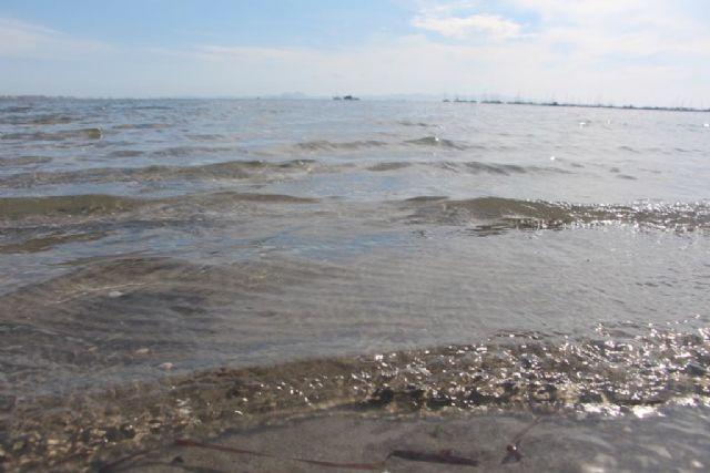 El Portal de la Transparencia incluye en su web información actualizada sobre el estado del Mar Menor - 1, Foto 1