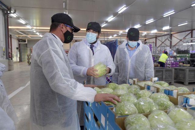 Más de 12.000 agricultores de la Región de Murcia se beneficiarán de nuevas ayudas por valor de 70 millones de euros durante este año