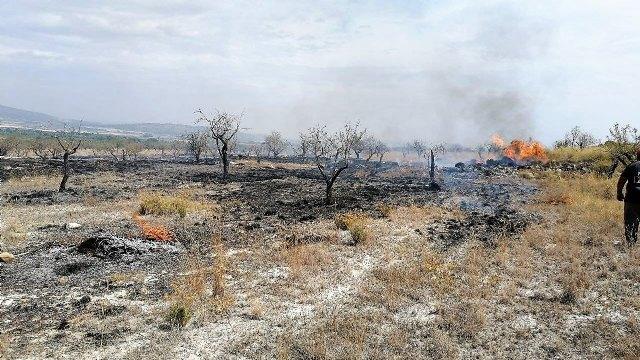 Incendio agrícola en el paraje de Las Pedroñetas en Moratalla - 1, Foto 1