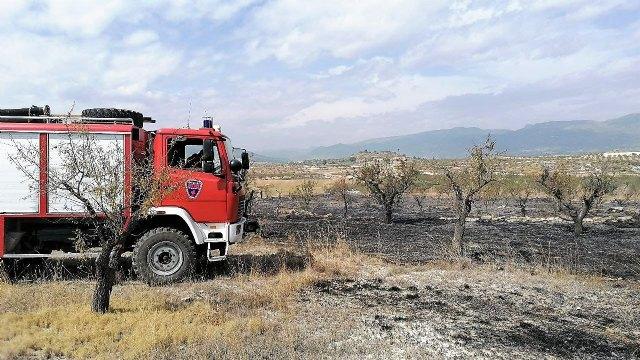 Incendio agrícola en el paraje de Las Pedroñetas en Moratalla - 2, Foto 2